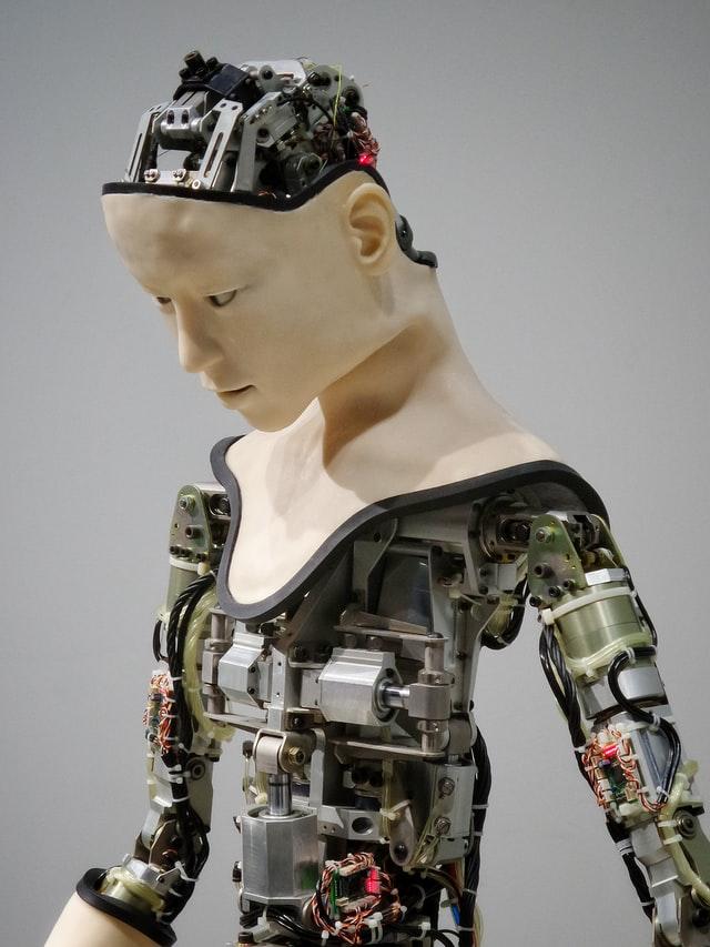 Humanoid, not human